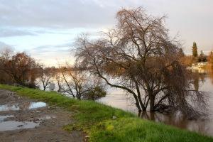 sac-river-upstream-view